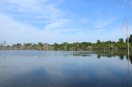 reflection cambodia