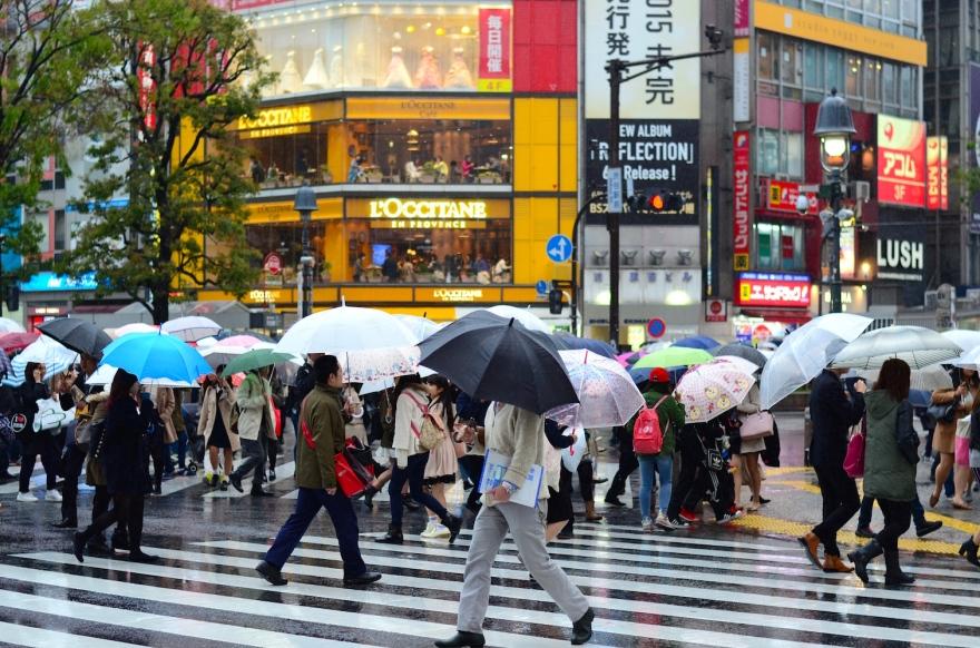 shibuya crowd japan