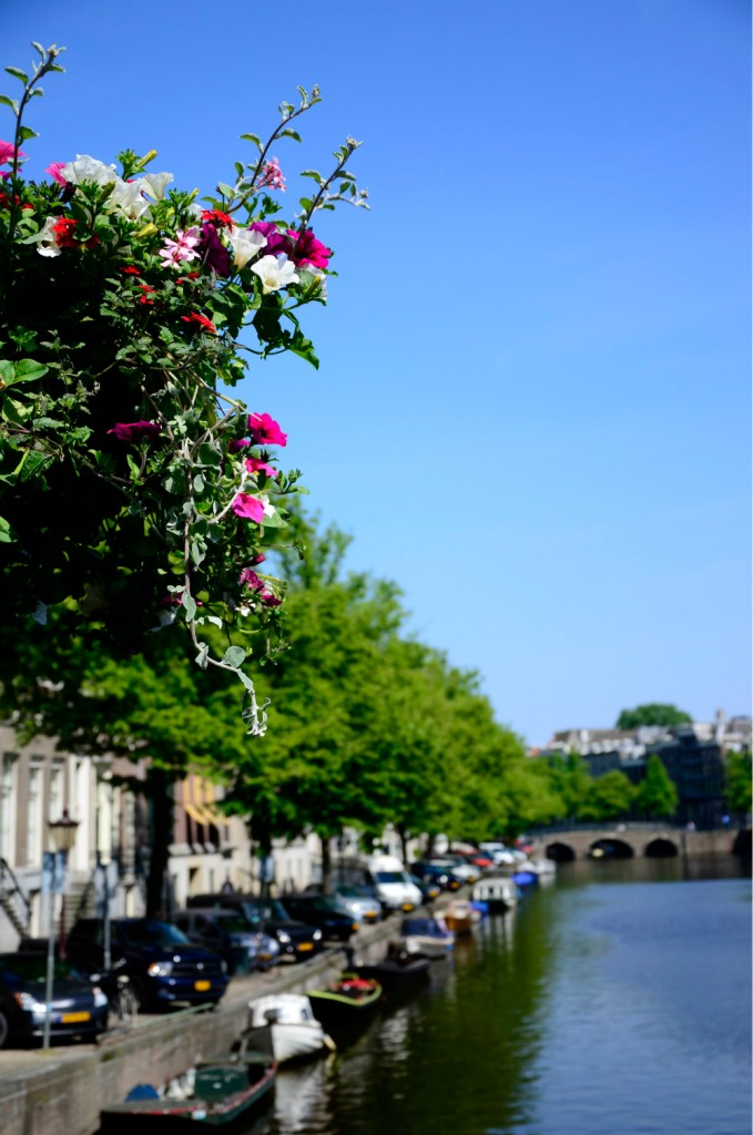 floral Dutch canal