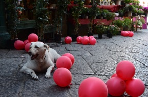 Follow the red balloons. -Naples